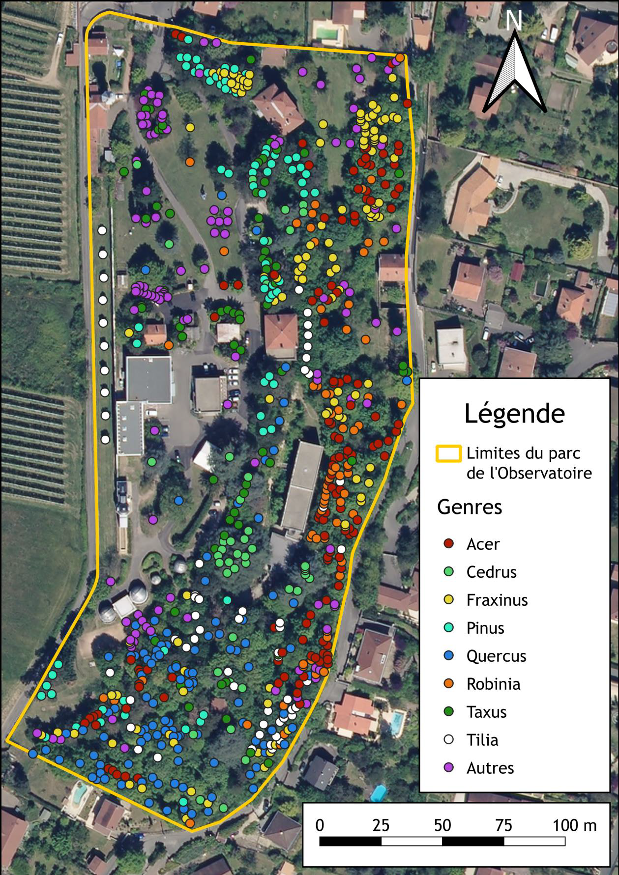 Cartographie des arbres du parc